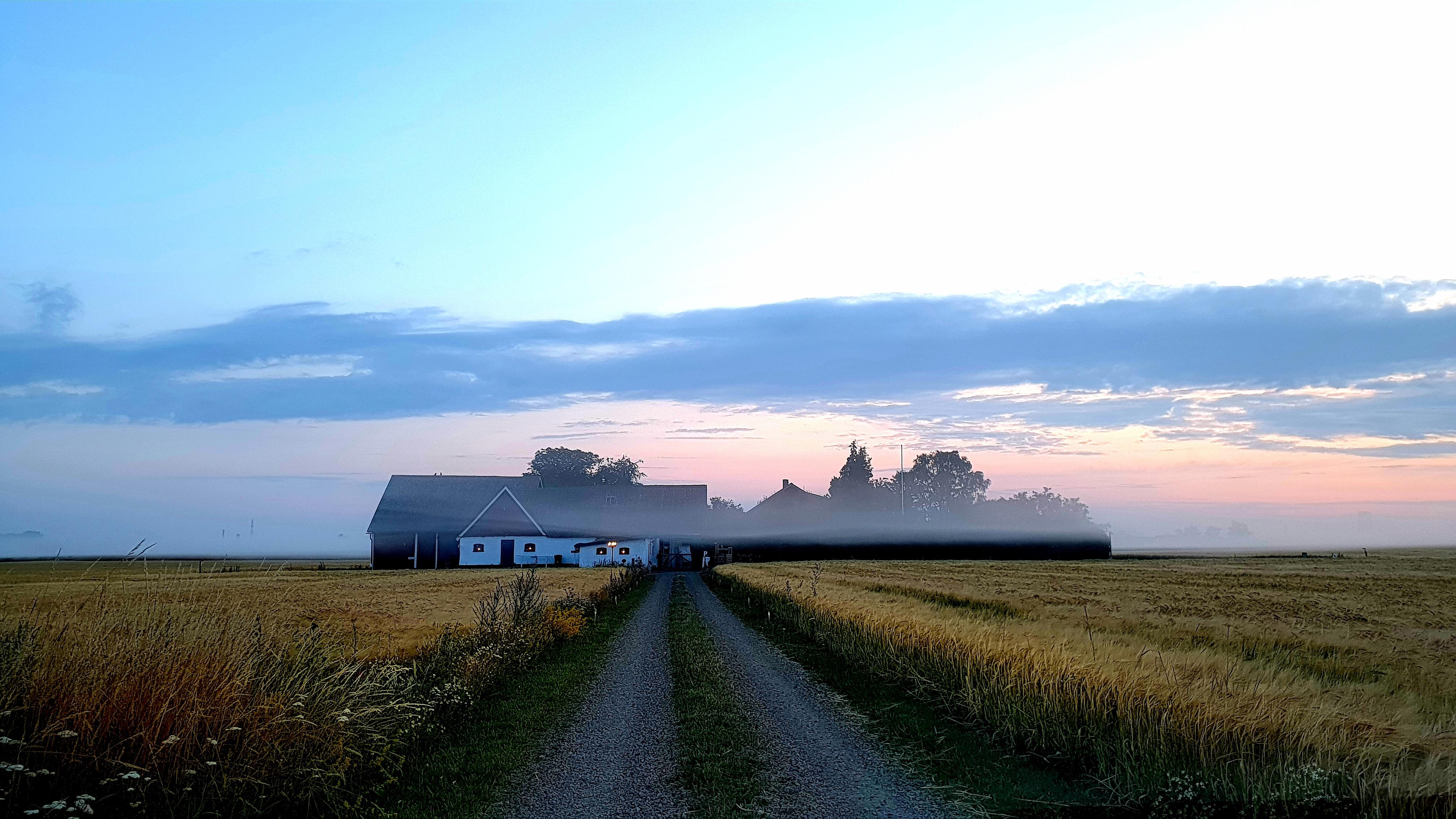 Sunrise at Dalhemfarm | Soluppgång Dalhemfarm